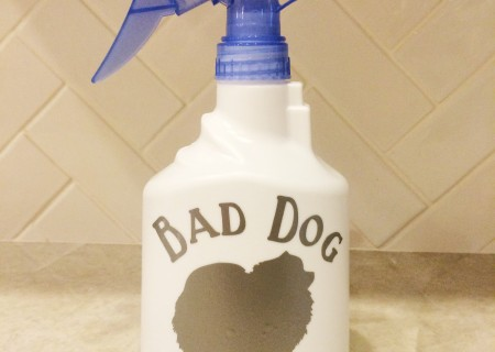 "DIY ""Bad Dog Spray"" Behavioral Aid Water Spray Bottle"