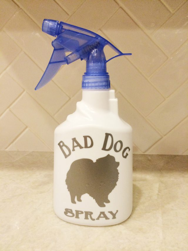 DIY Bad Dog Spray Bottle Remodelicious
